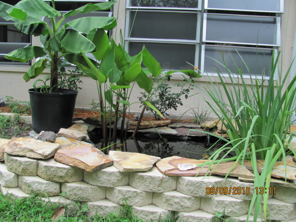 "Recycled Hot Tub!, I Recycled an old Hot Tub into a Great Pond by putting it into the ground! Very easy - really. The (hot tub) seats are used for shelves for the plants & used larger slabs of stone to make ""hiding"" bridges for the fish., the plants are sitting on the shelves that were once seats, Yards Design"