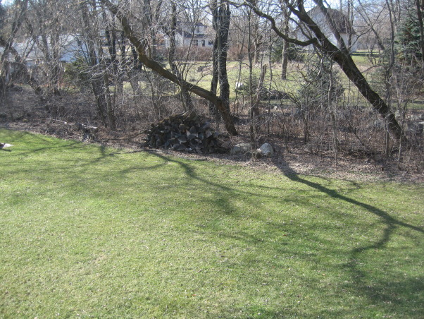 I need help from Yard Crashers, My husband I I built our home in 2005 - and have not completed the yard projects yet - I have recently lost my job and with that said the money is gone  , old trees need to be replaced with new, Yards Design
