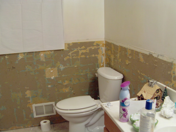 I am doomed, II have no Idea how to work with this bathroom. It is too small..., I am good at remodeling, but if I have to demo, I do not know where to start???, Bathrooms Design