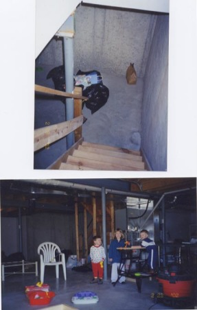 Did it myself, Finished my basement - from plain concrete walls to a space designed by me that is open, has an office, powder room, TV area, kids area, refreshment area and storage., before pics, looking down the steps and a wider view of the basement... and my three amigos.  Behind them in the picture is the HVAC, H/W heater.  They are part of the storage area.   , Basements Design