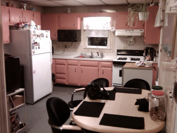 Pink Kitchen Redo, We inherited a carpeted 19x22 pink kitchen used as a laundry room and computer room as well., BEFORE:  House before previous owners moved out..., Kitchens Design