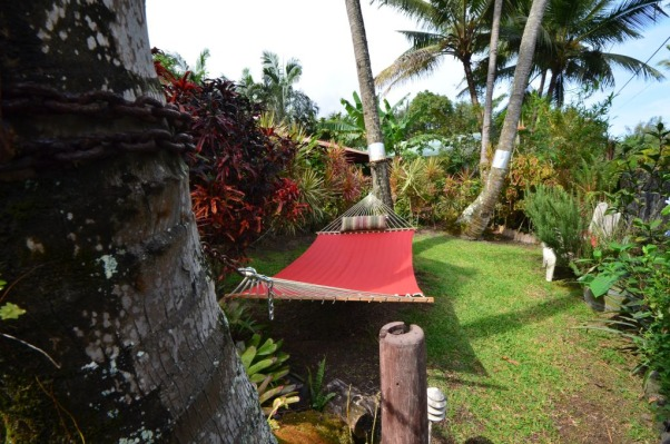 Bali House and Bali Cottage Hawaii, Bali and Asian Inspired tropical gardens in Hawaii., Relaxing hammock under a coconut tree, Gardens Design