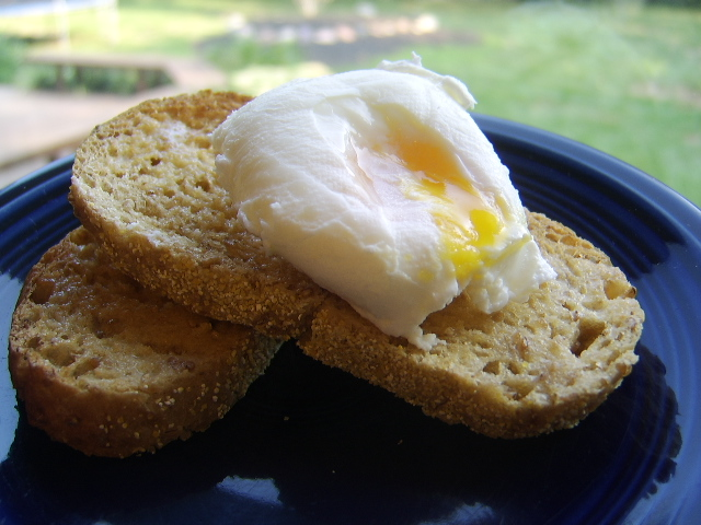 Microwave Poached Eggs Recipe