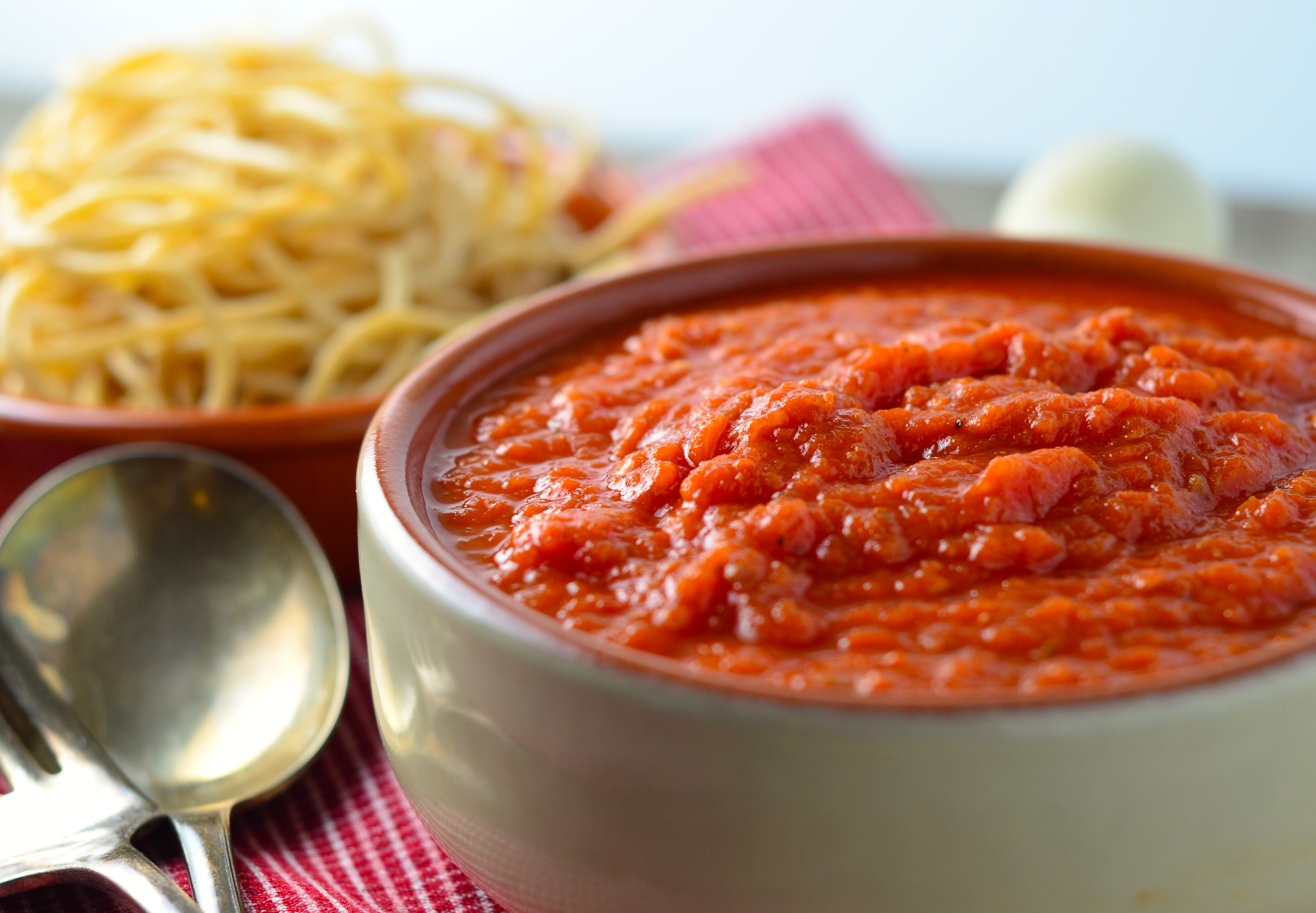 Slow-Simmered Spaghetti Sauce
