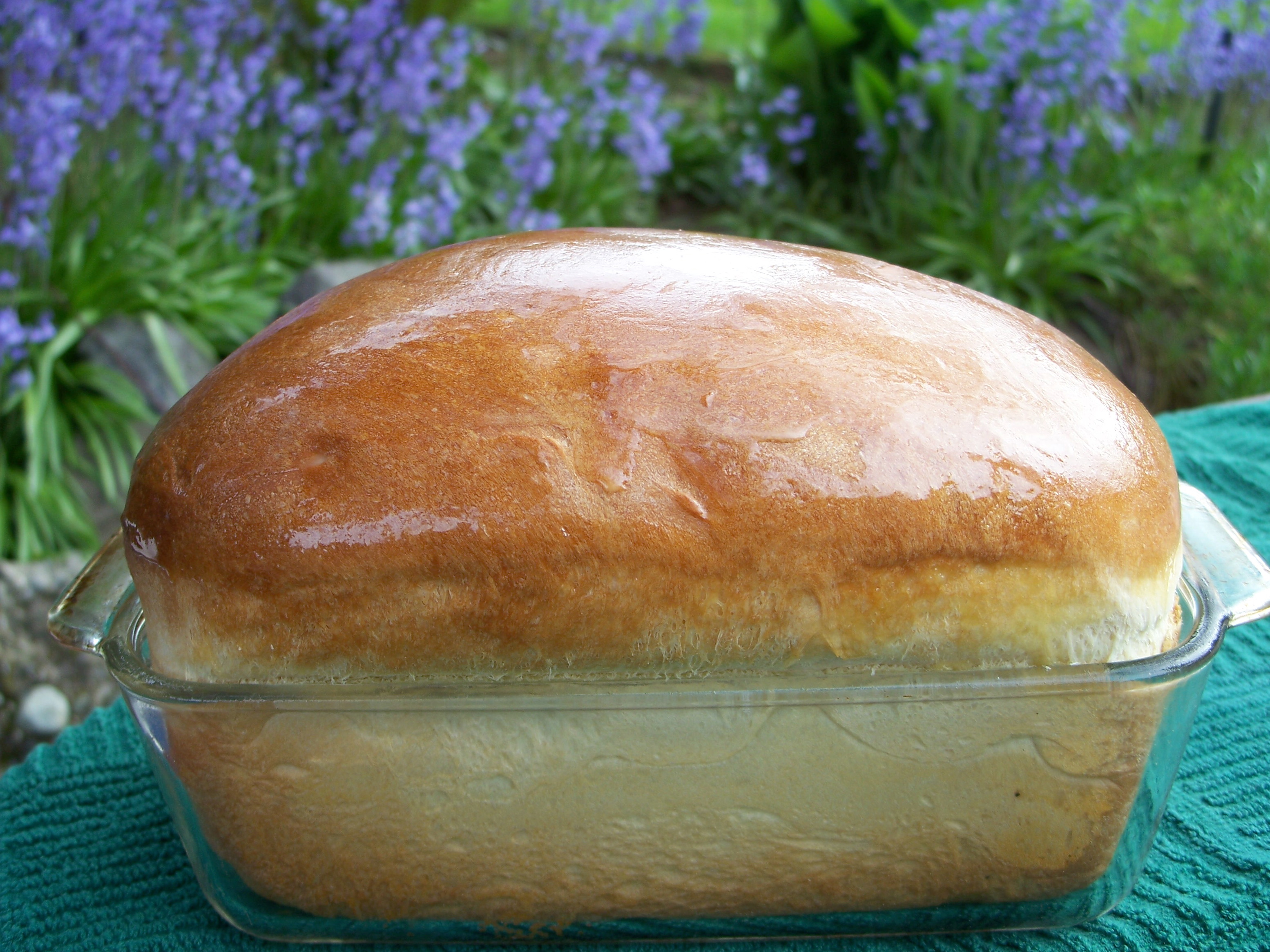 Sweet Hawaiian Yeast Bread (bread Machine) Recipe