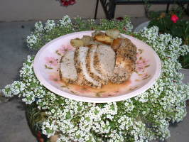 My Favorite Nearly Non-Fat Spice Rubbed Pork Loin Roast. Photo by Miss Debs of Colorado