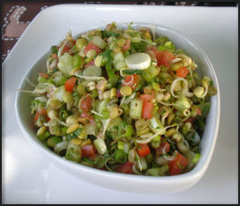 Indian Sprouted Lentil Salad. Photo by Sandi (From CA)