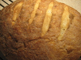 Bakery Style Sourdough Bread. Photo by Galley Wench