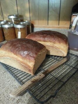 100% Whole Grain Wheat Bread. Photo by Shellygra