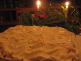 Fantakuchen (Fanta Cake) a Popular German Cake Made With Fanta!. Photo by Dreamer in Ontario