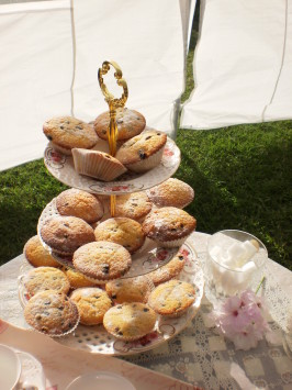 Regency Queen Cakes for Jane Austen's Afternoon Tea Party. Photo by Happyliltumtum