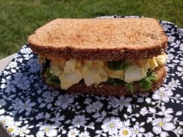 Auntie Andi's Egg Salad for Little's Little #1 Longmeadow. Photo by AZPARZYCH