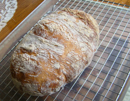 Our Daily Bread in a Crock - Weekly Make and Bake Rustic Bread. Photo by PKG