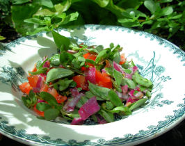 Wild Purslane Salad With Olive Oil and Lemon Dressing. Photo by French Tart
