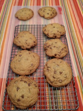 Perfect Chocolate Chip Cookies (America's Test Kitchen). Photo by Mark A Freeman