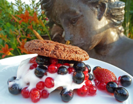 Chocolate Shortcakes With Mixed Berries and Raspberry Sauce. Photo by awalde