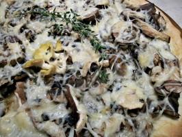 Wild Mushroom Pizza With Truffle Oil. Photo by FLKeysJen