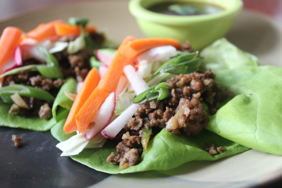 Chinese Spicy Beef Lettuce Wraps Recipe - Food.com