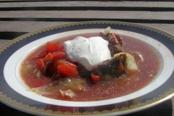 Russian Cabbage Soup Recipe - Food.com