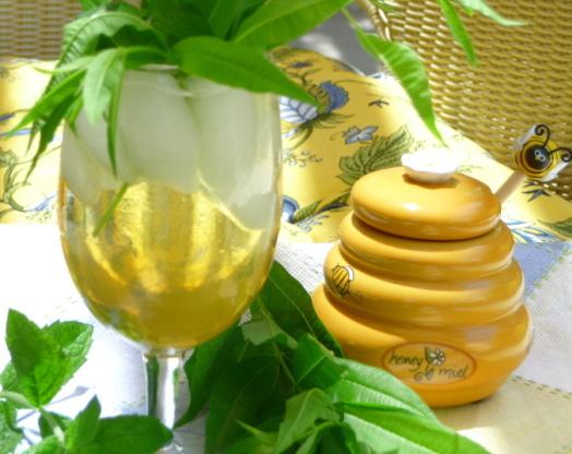Lemon Verbena Drink Recipes — Dishmaps
