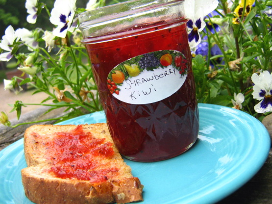 to a simmer the finished strawberry kiwi strawberry kiwi jam is a