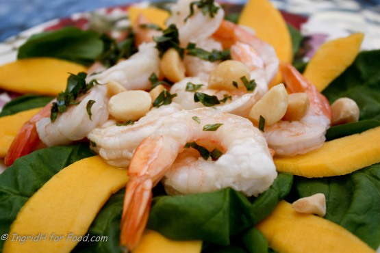 Prawn, Mango And Macadamia Salad With Lemon Basil Dressing ...