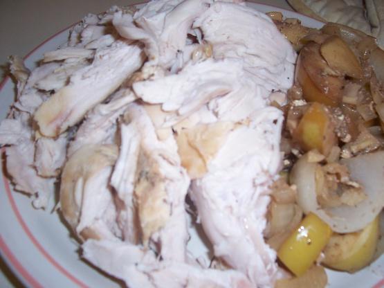 Thanksgiving Turkey in the Crock Pot! - Babble