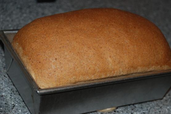 Basic Whole Wheat Bread Recipe - Genius Kitchen