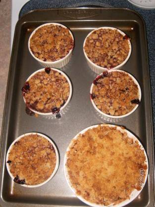 Individual berry crisp from alton brown recipe genius for Alton brown oat cuisine