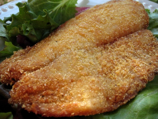 Beas fish coating for deep frying fish recipe genius kitchen for Cornmeal fried fish