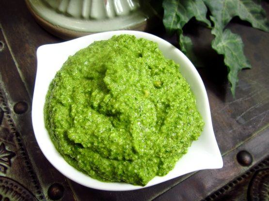 walnut pesto basil walnut pesto comes palo basil walnut pesto basil ...