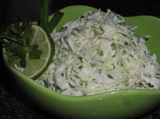 Tequila Slaw With Lime And Cilantro Recipe - Food.com