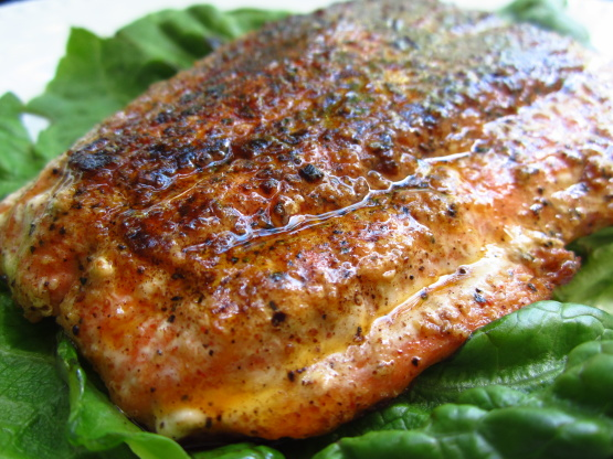 Blackened salmon fillets for Blackened fish recipes