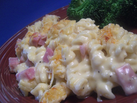 Ham pasta recipes casserole