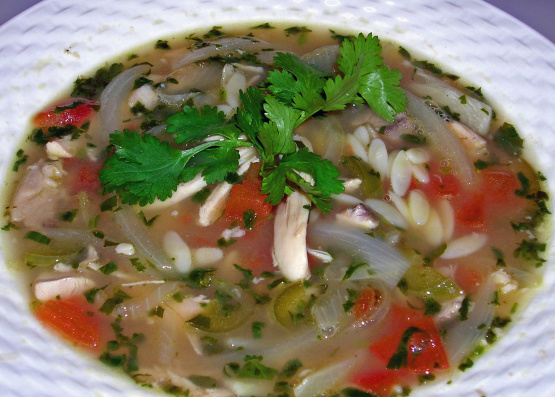 ... orzo soup yucatan style chicken lime breezermom yucatan style chicken