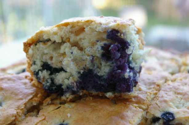 Blueberry Oatmeal Cake Recipe — Dishmaps