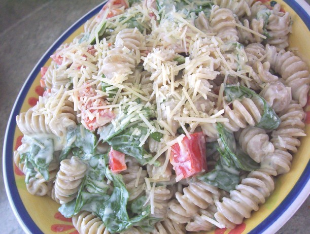 Roasted Red Pepper Caesar Pasta Salad Recipe - Food.com