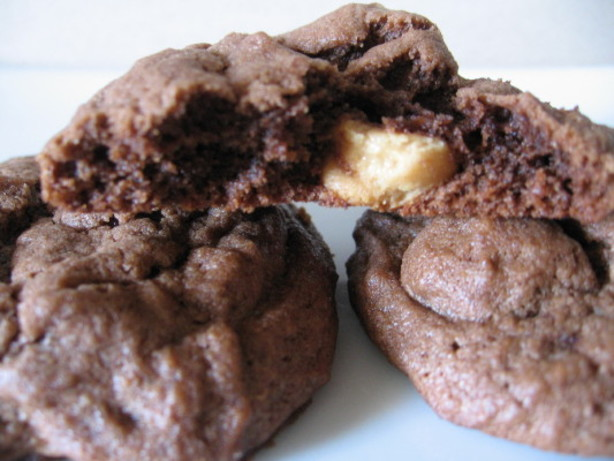 Double Chocolate Double Peanut Butter Cookies Recipe - Food.com