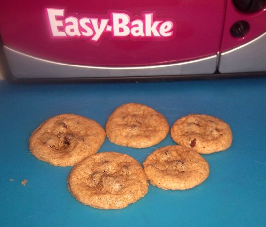Easy bake oven secret chocolate chip cookies recipe for Atkins cuisine all purpose baking mix where to buy
