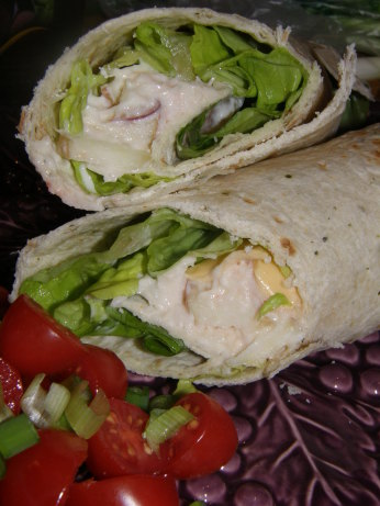 Weight Watchers 4 Pt Chicken Salad Wrap Recipe - Food.com