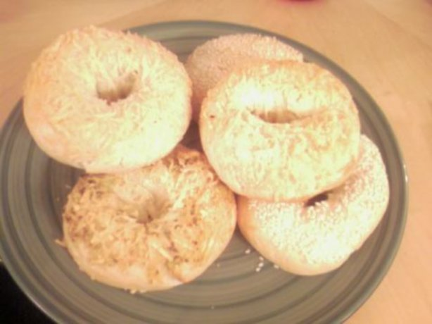 1000 images about bagels on pinterest homemade bagels ci