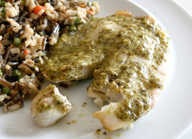 Simple And Quick Tilapia Pesto Recipe