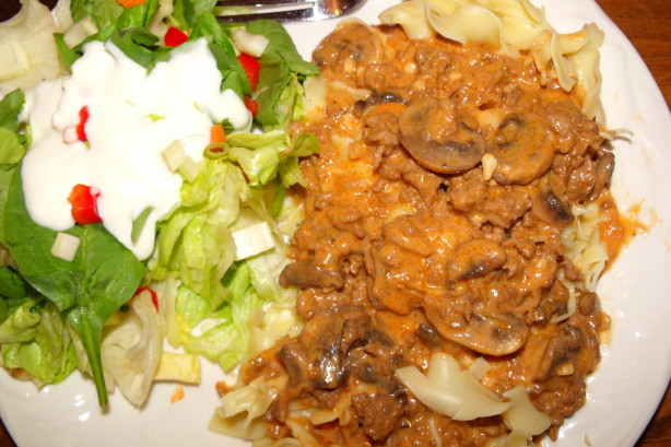 Peters cuisine the world cook book blog weight watchers beef stroganoff recipe - Blog cuisine weight watchers ...