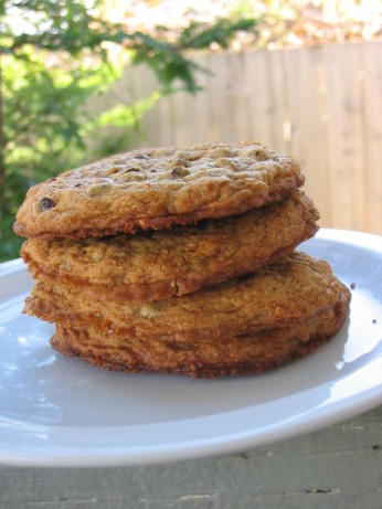 Chewy Gluten-Free Chocolate Chip Cookies Recipe - Food.com
