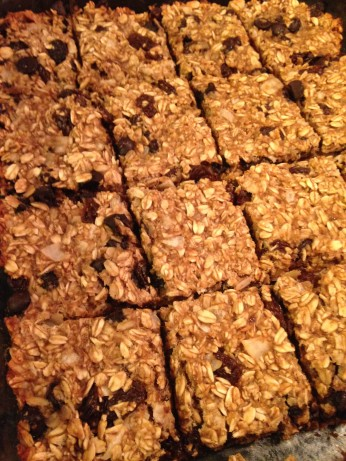 Dr Fuhrmans Yummy Quick And Easy Banana Oat Bars Recipe