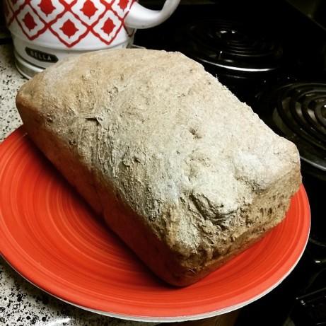Basic Whole Wheat Bread Recipe - Food.com