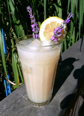 Lavender Infused Lemonade -Martha Stewart Recipe - Food.com