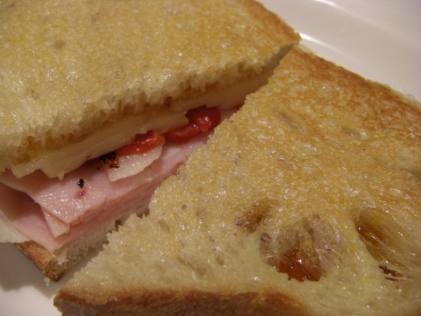 Grilled Turkey And Swiss Panini Sandwich Recipe - Food.com