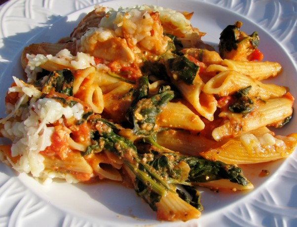 Three Cheese Chicken Penne Pasta Bake Recipe Food Com