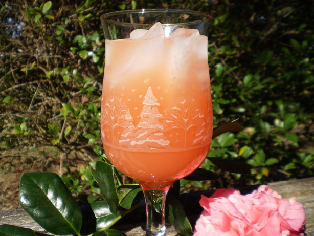 Tropical Sunrise Virgin And Alcoholic Recipe Healthy